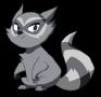 Raccoon's Avatar